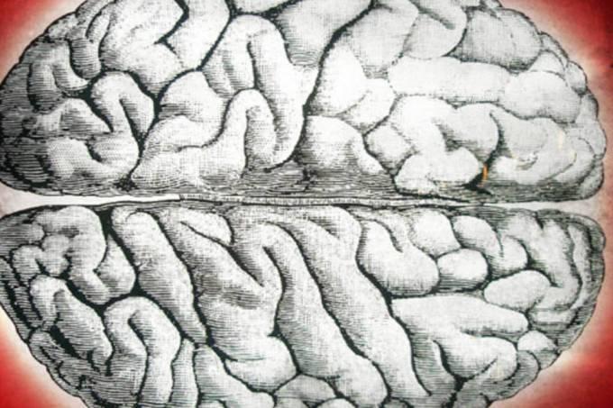 Cerebro - alcoolismo - tirandoduvidas.com