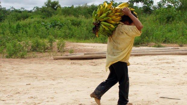 Os melhores corações esta na tribo amazonica - tirandoduvidas.com