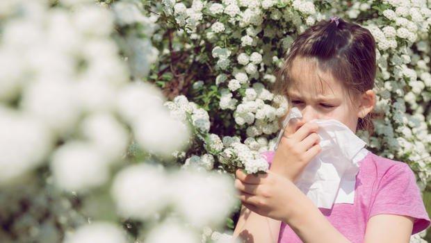 Qual medicamento usar para alergia ? tirandoduvidas.com